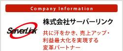 京都のWebサービス/業務システム開発なら株式会社サーバーリンク